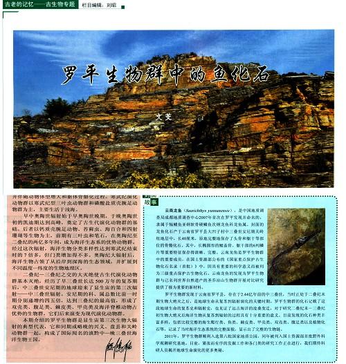大自然杂志专刊介绍罗平生物群